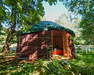 picture_yurt